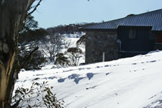 Barina Lodge surround by snow